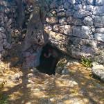 Menorca_Poblat de Sant Joan de Misa Grabhöhle