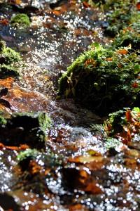 Kristallklares, reines und frisches Wasser der Vesser