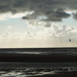 Holland_DSC_1042