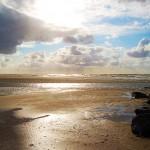 Holland_DSC_1047
