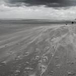 Holland_DSC_1521
