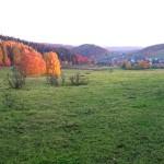 Knuellfeld_0994