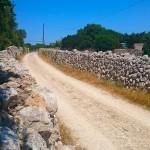 Menorca_Cap de Artrutx Kuestenstrasse