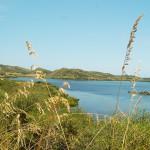 Menorca_Nationalpark Albufera Illa d en Colom