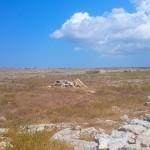 Menorca_Punta Nati Steppe2