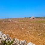 Menorca_Punta Nati Steppe4